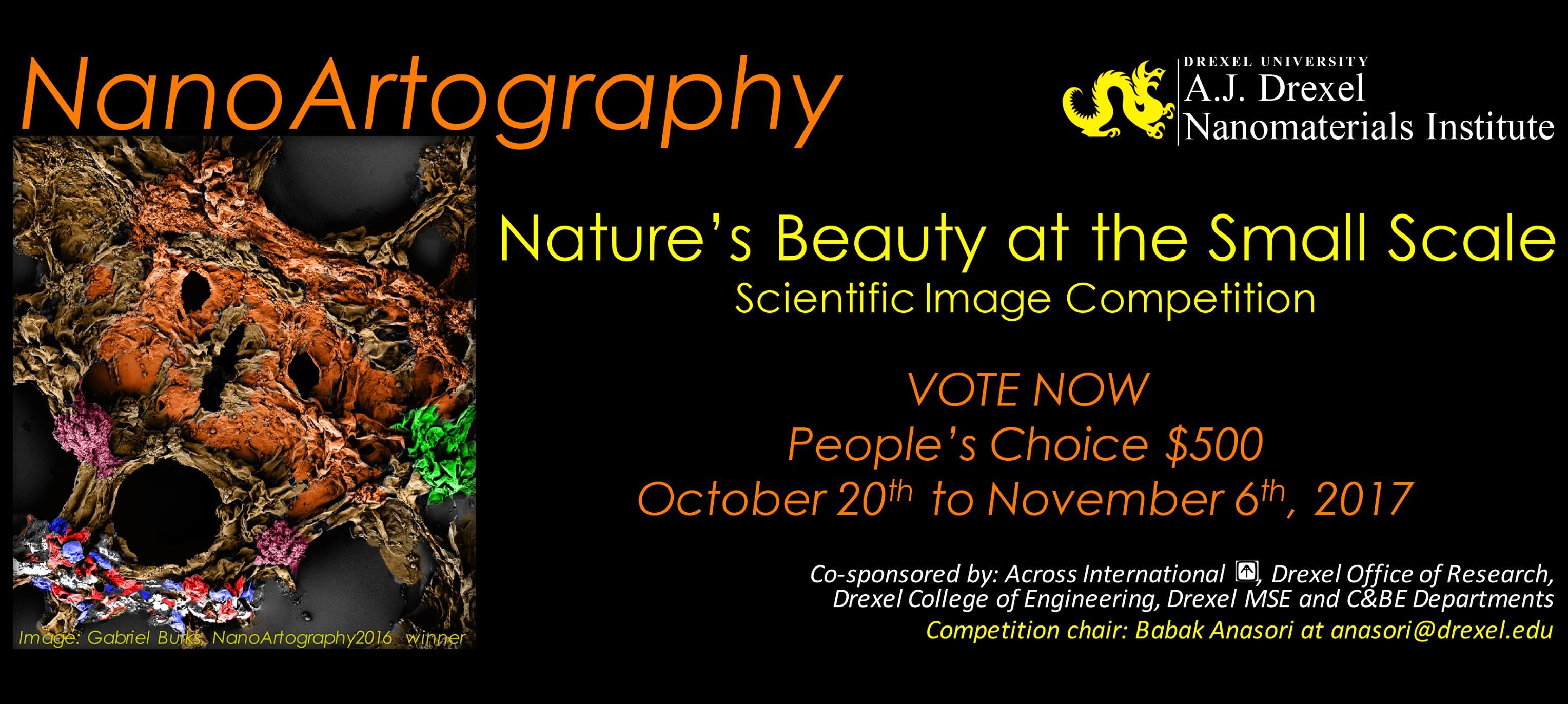 Imagens de Nanoarte do CDMF concorrem em concurso dos Estados Unidos